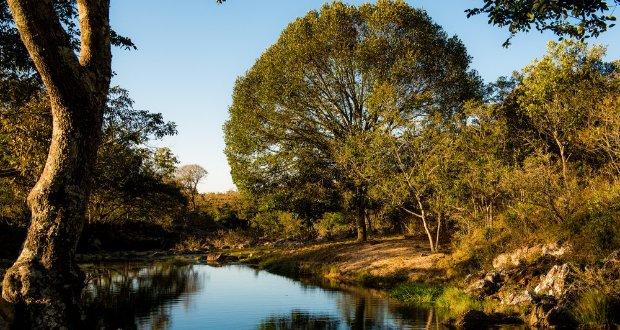 Natureza, rios e cachoeiras estão entre as atividades da região