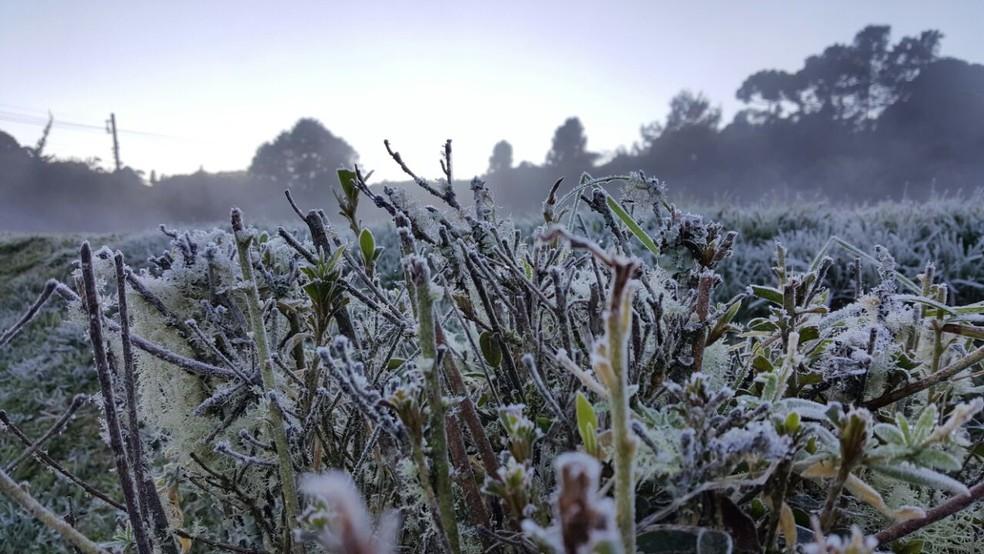 Na madrugada mais fria do ano, Monte Verde registrou geada neste domingo (11) (Foto: Nelson Pacheco)